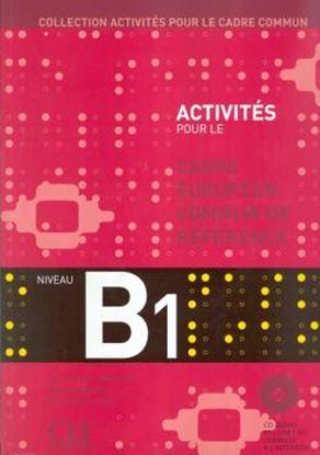 Imagem de ACTIVITES POUR LE CADRE COMMUN B1 (LIVRE + CD)